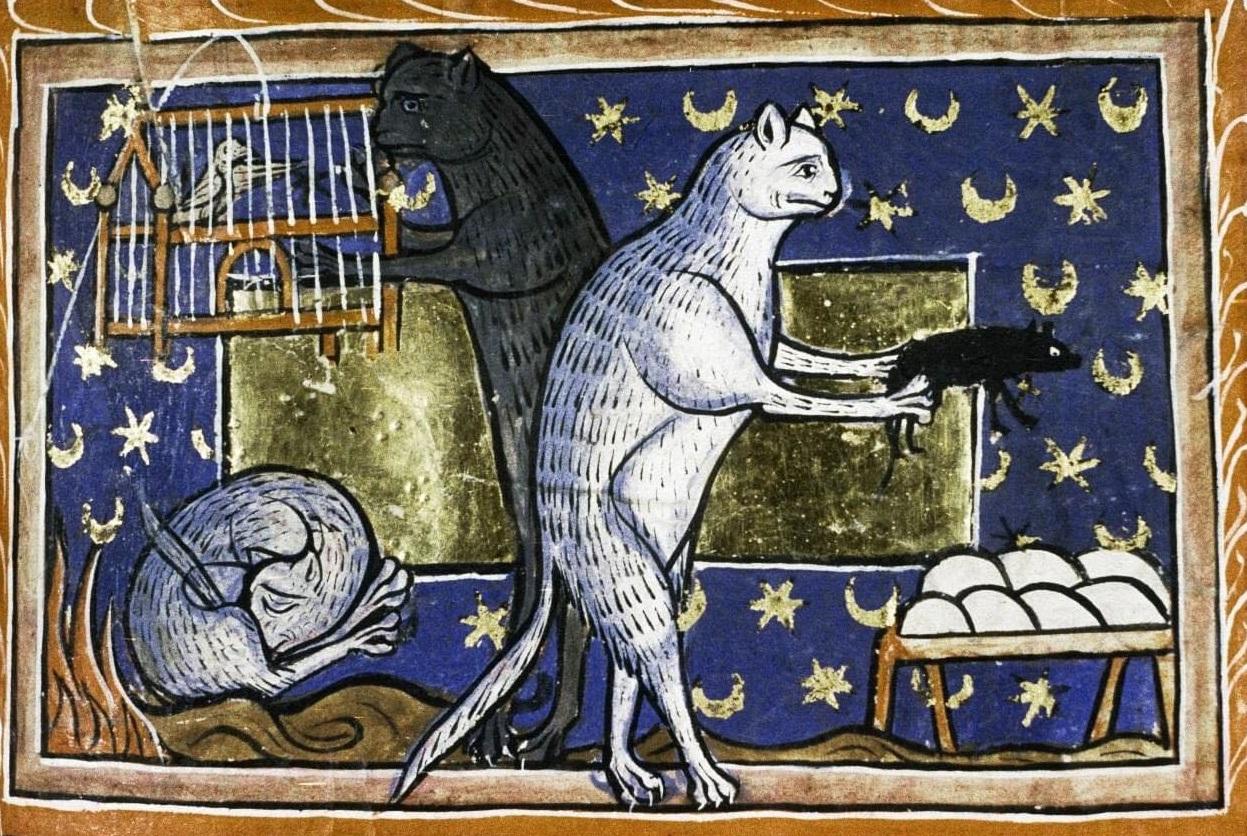"""""""Abitudini dei gatti"""", da un bestiario inglese del tredicesimo secolo"""